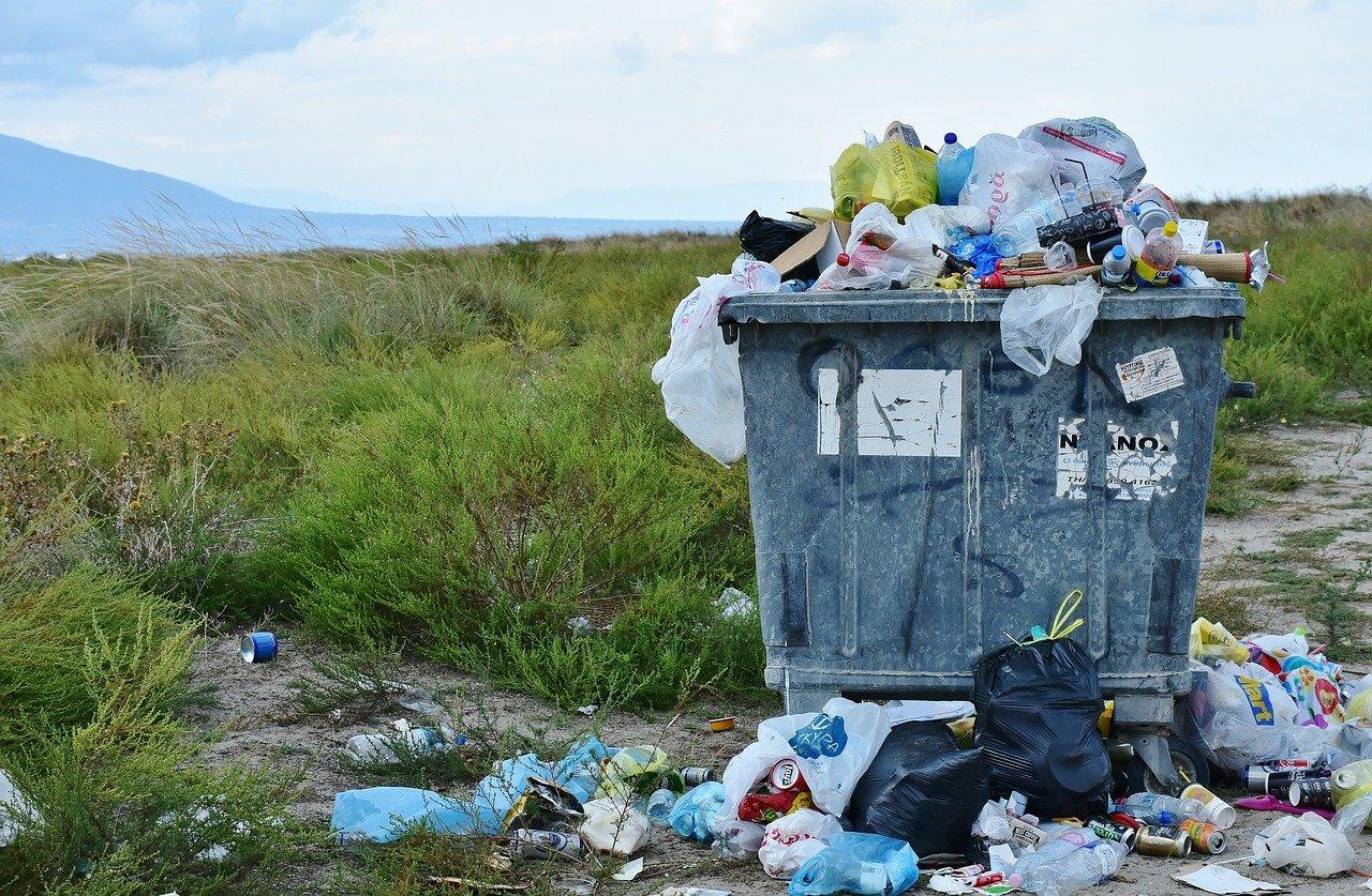 Жителей пригорода Ростова-на-Дону обвинили в загрязнении Щепкинского леса